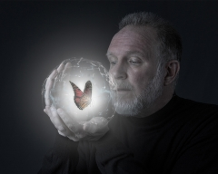 Contemporary -  Magic Butterfly - Michael Huber