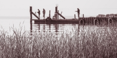 Mono Print - Family Fishing - Steve Cole