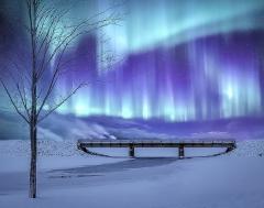 1.Aurora Bridge - Michael Herrem
