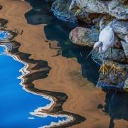 1st Place Nature - Crossroads Reflections - Gary Schafer