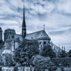 Mono Print Image of the Year - Notre Dame Cathedral - Terry Butler