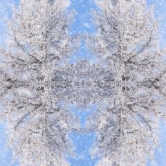 Contemporary - Snowy Mirror - Melissa Anderson