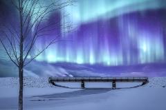 Color Print - Bridge Light Show - Michael Herrem