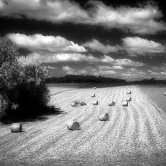 Honorable Mention Realistic - Hay Bails in the Countryside – Ken Wolter