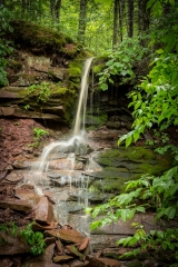Nature Acceptance - Now and Then Falls - Betty Bryan