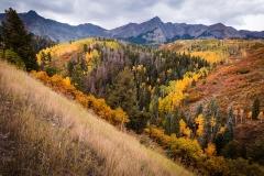 Realistic Acceptanc - Fall in Colorado - Betty Bryan