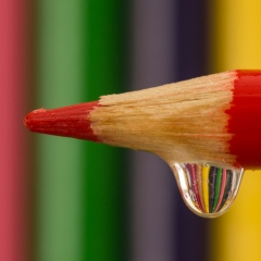 Realistic - Colored Pencils With Refraction -  Larry Weinman