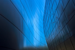 Contemporary Honorable Mention - Walt Disney Concert Hall Detail - Ken Wolter