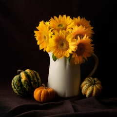 Color Print - Sunflowers and Squash - Terry Butler