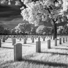 Contemporary - Fort Snelling National Cemetery in Infrared Black and White - Ken Wolter