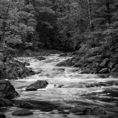 Mono Print - Amnicon Falls - Terry Butler