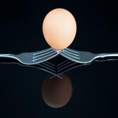 Assignment - Egg - Betty Bryan