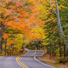 Assignment - Road to Copper Harbor, MI - H Steve Cole