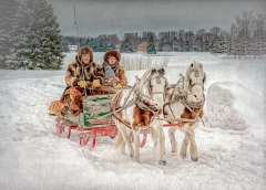 Contemporary Image of the Year - An Old-Fashioned Sleigh Ride - Marianne Diericks