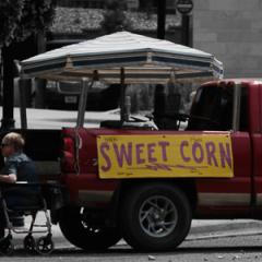 6.Sweet corn season - 325