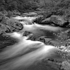 Blank & White Acceptance - Smoky Mtn Zig Zag - Steve Plocher