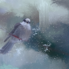 1st Place - Altered Reality - Canada Jay Ready for Winter - Melissa Anderson