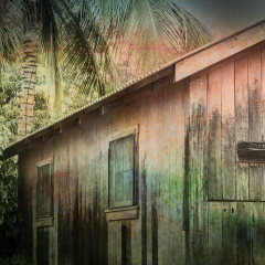 Assignment - The Classic Beach House - Melissa Anderson