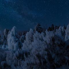 Pictorial - Frozen - Melissa Anderson