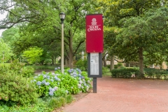 Campus Walkway and Garden at University of South Carolina