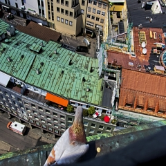10 Bird's Eye View - Munich Germany
