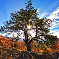 04 Bryce Canyon -Utah
