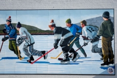 05 Pond Hockey