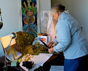 Marilyn Rau at Work - Mary Johnson
